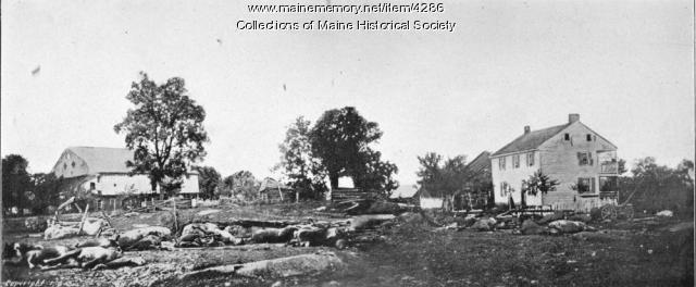Dead artillery horses after fight at Trostle's house in Gettysburg
