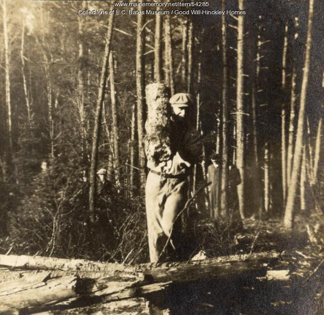 Carrying wood, Fairfield, ca. 1920