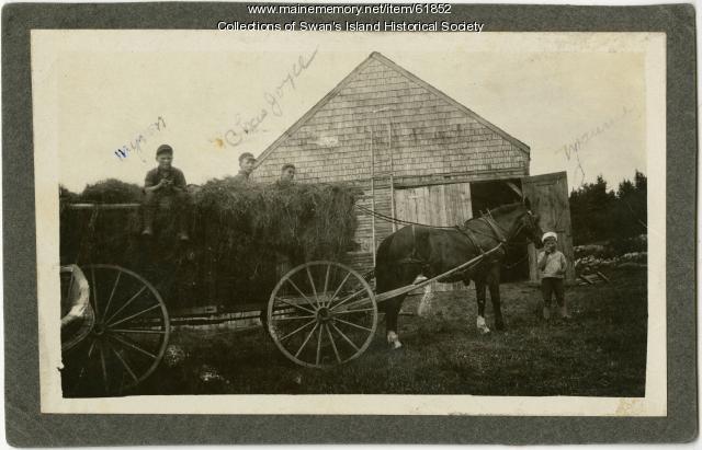 Hauling hay, Swan's Island, ca. 1925