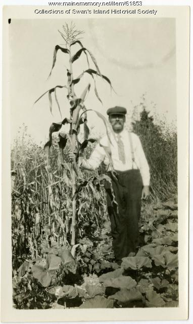 Walter Joyce comparing height of corn, Swan's Island, ca. 1930