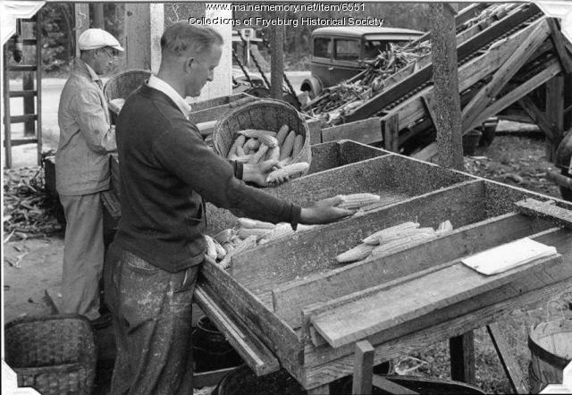 Milk content testers, Fryeburg, ca. 1940.