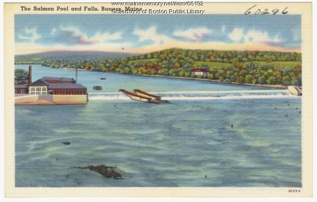 Salmon Falls, Bangor, ca. 1938
