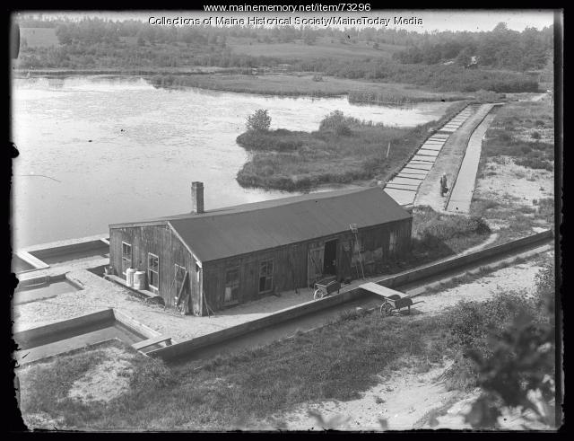 Clear Springs Trout Ponds hatchery, Bar Mills, 1924