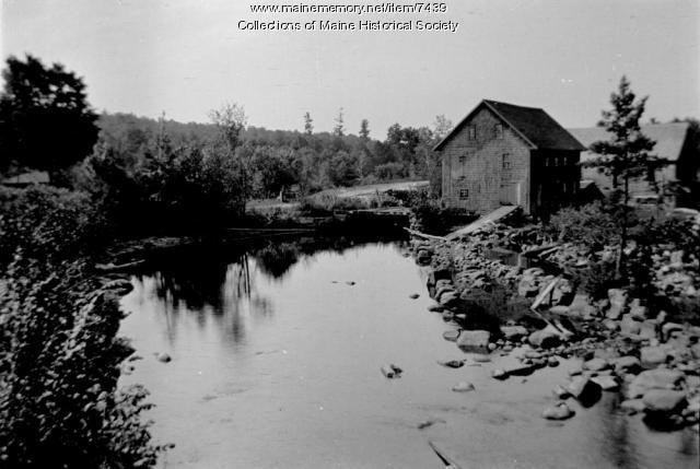 Denmark mill pond, August 1911