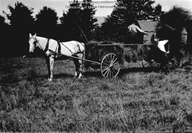 Haying, Denmark, 1911