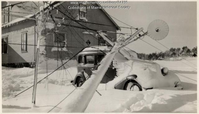 Tree on car, Auburn, 1943
