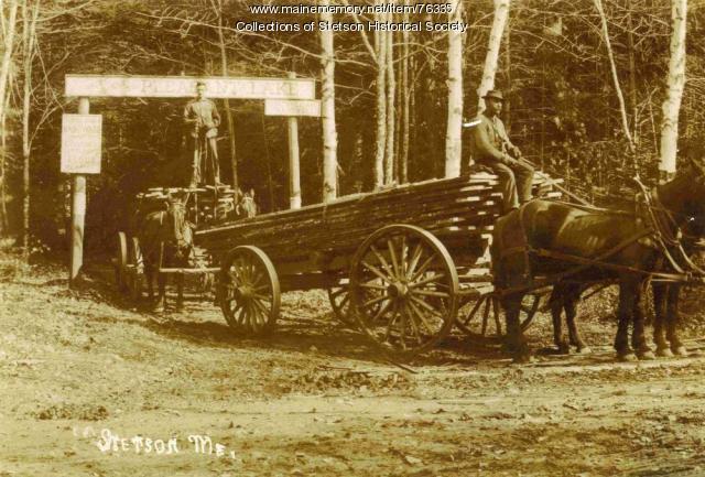 Hauling rough lumber, Stetson, 1909