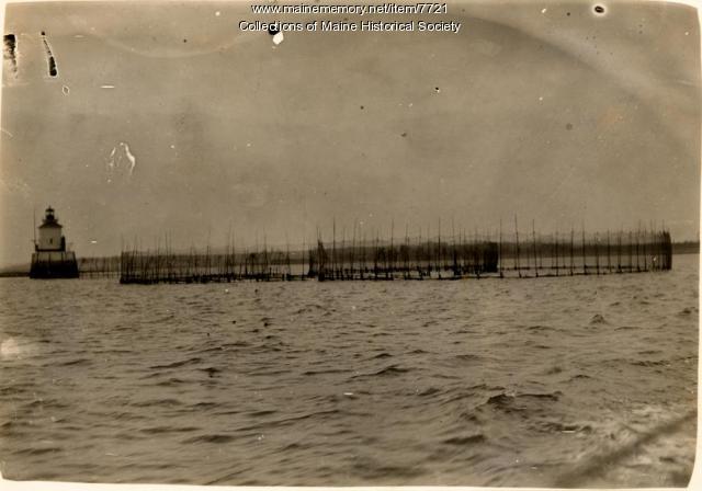 Lighthouse guides herring
