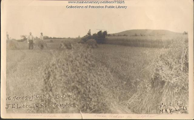 Libby Farm, Big Lake Township, 1932