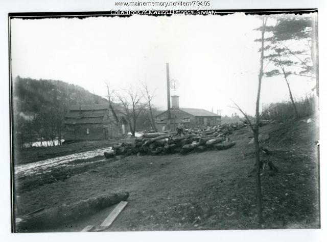 Fernando Allan Richards Sawmill, Mexico, ca. 1904