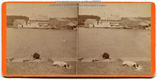 Young sports, Moosehead Lake, ca. 1880