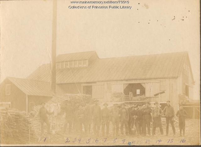 McKechnie Mill, Indian Township, ca. 1907