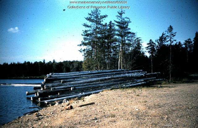 Boom Logs, Greenlaw Chopping Township, ca. 1955