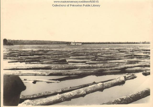 The Captain Lewy with Log Boom, Princeton, ca. 1890