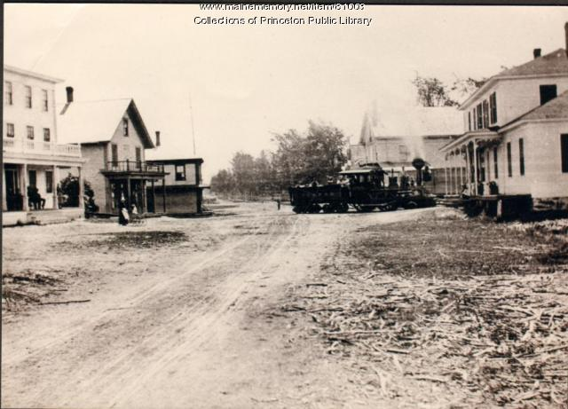 Early Train, Princeton, ca. 1880