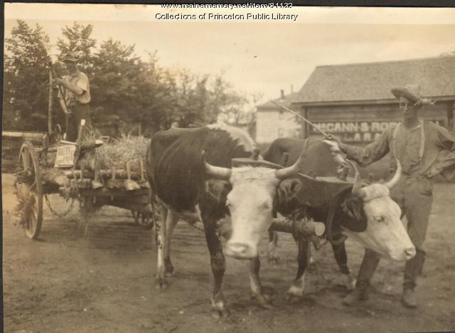 Centennial Grange Float, Princeton, 1932