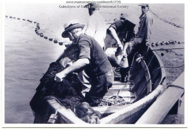 Setting the nets for a fish trap