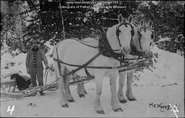Hamp Stockford with Team and Sled