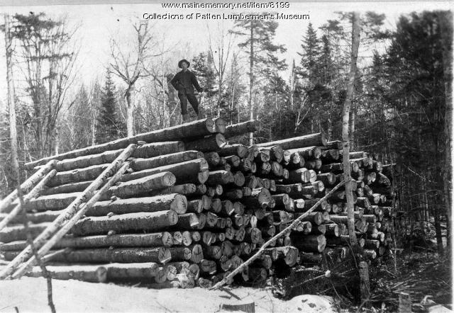 William Allen on Log Pile