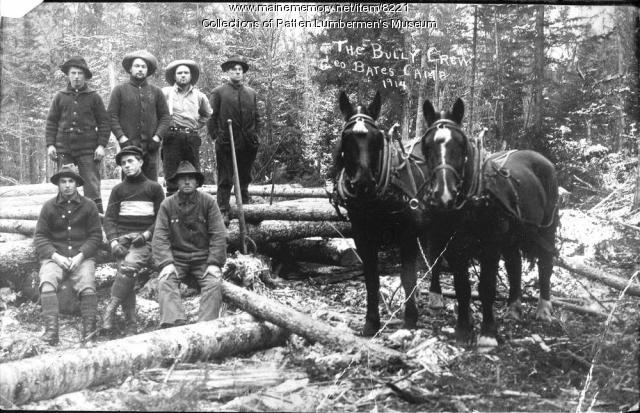 Bully Crew, Luther Hall's Camps, 1914