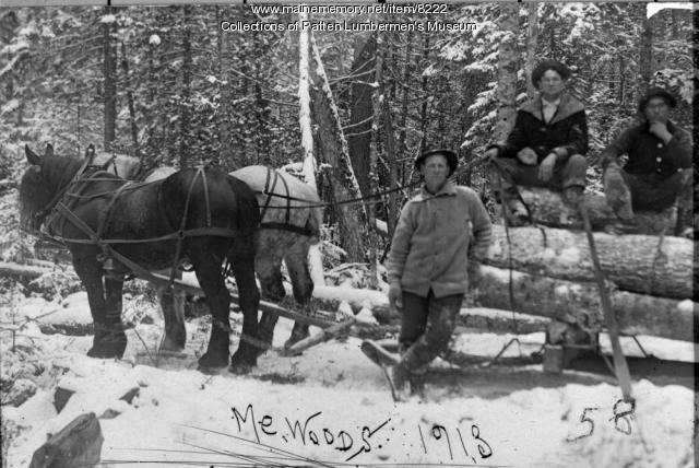 Ed Kennedy's Team at Mud Pond,  1913