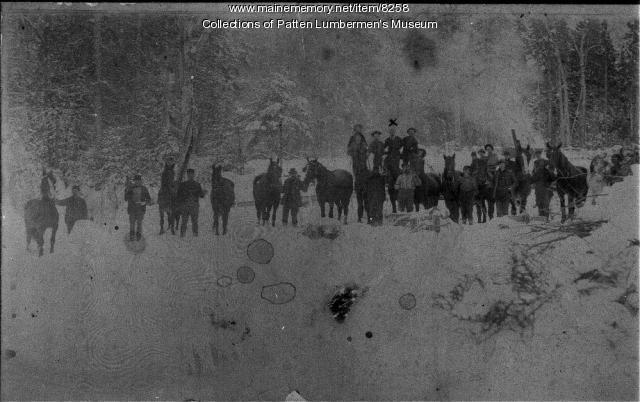 Emerson Lumber Co. teams at Hay Brook, 1901
