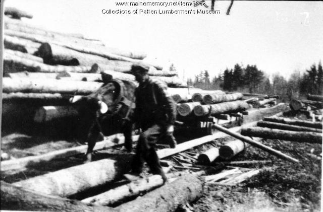 Hauling Logs to Robinson Land and Lumber Co.