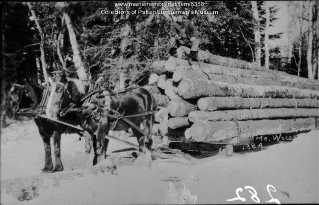 Horses pulling log sled, 1924