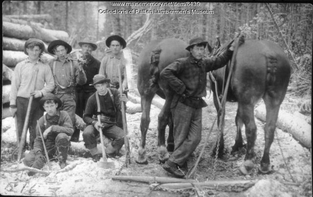 Woodsmen & horses