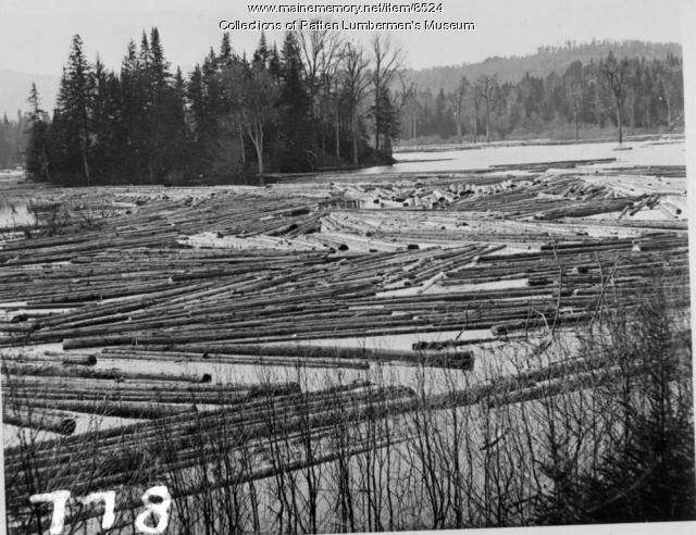 Logging, Maine woods, ca. 1900