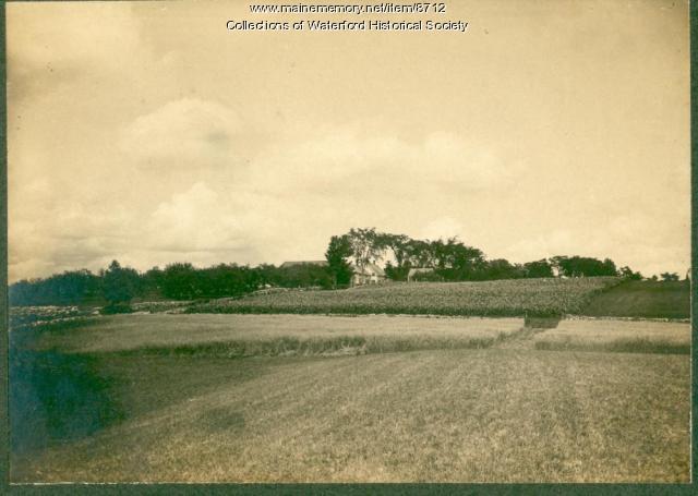 Fields, Waterford, ca. 1905