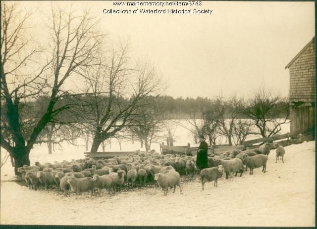 McIntire Farm, Waterford, ca. 1910
