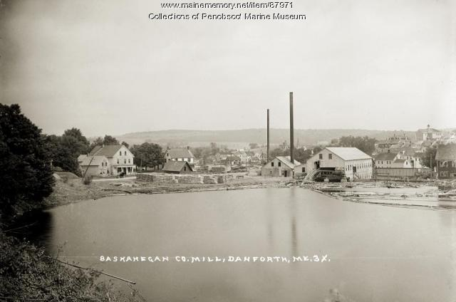 Baskahegan Co. Mill, Danforth, ca. 1915