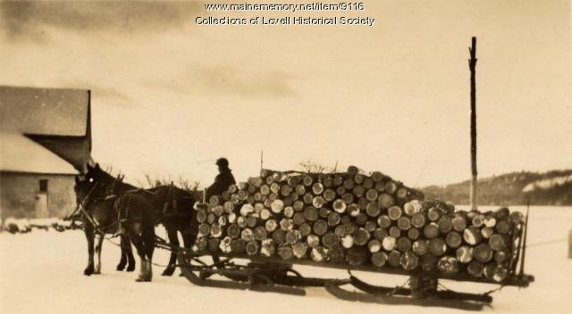 Hauling wood on sled, Lovell, ca. 1916