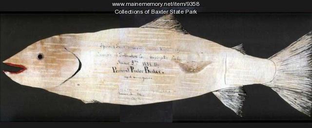 Percival Baxter's birch bark fish outline, 1884