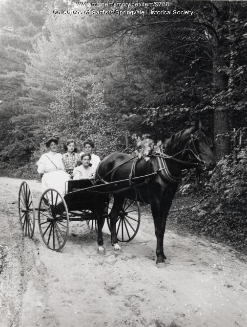 Horse & Buggy with Four Ladies