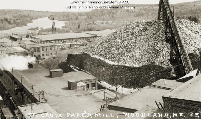 Pulp pile, St. Croix Paper Co., Woodland, ca. 1910