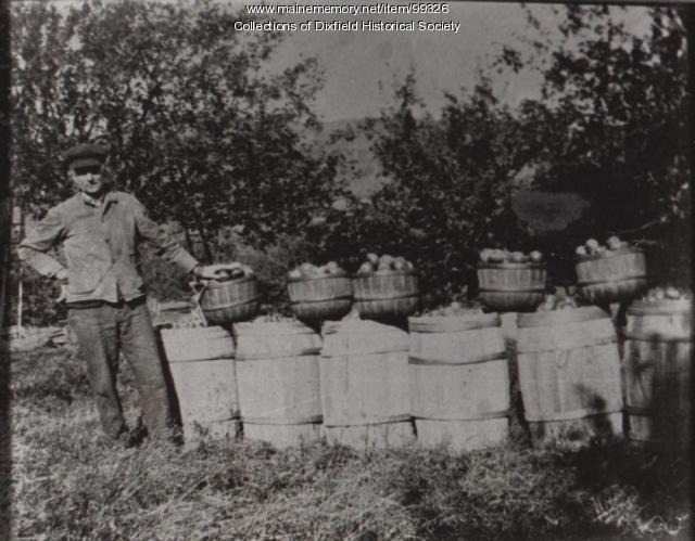 Greenleaf Walton's apple crop, East Dixfield, ca. 1890